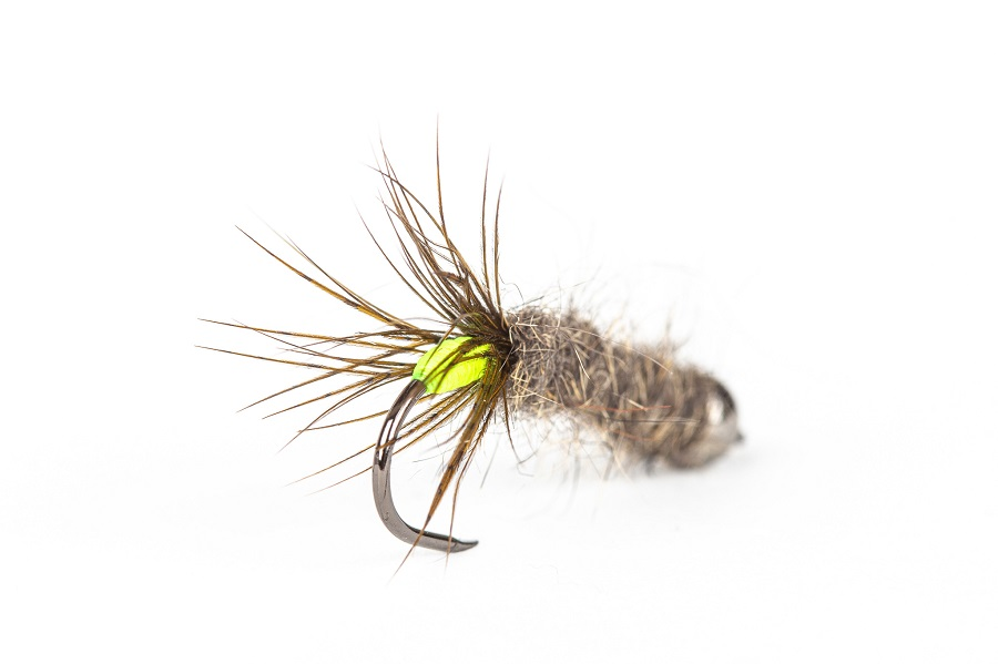 How To Tie A Peeping Caddis (in 5 easy steps)